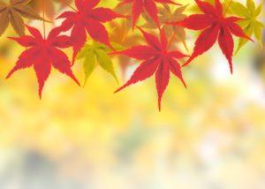 10月の天気