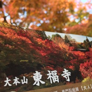 東福寺拝観チケット