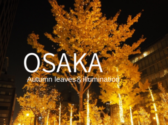 大阪の秋冬観光おすすめ